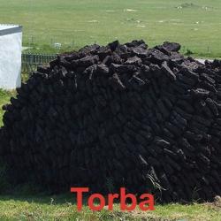 Quasimodonline carbone - Il carbone vegetale fa andare in bagno ...